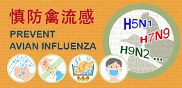 慎防禽流感